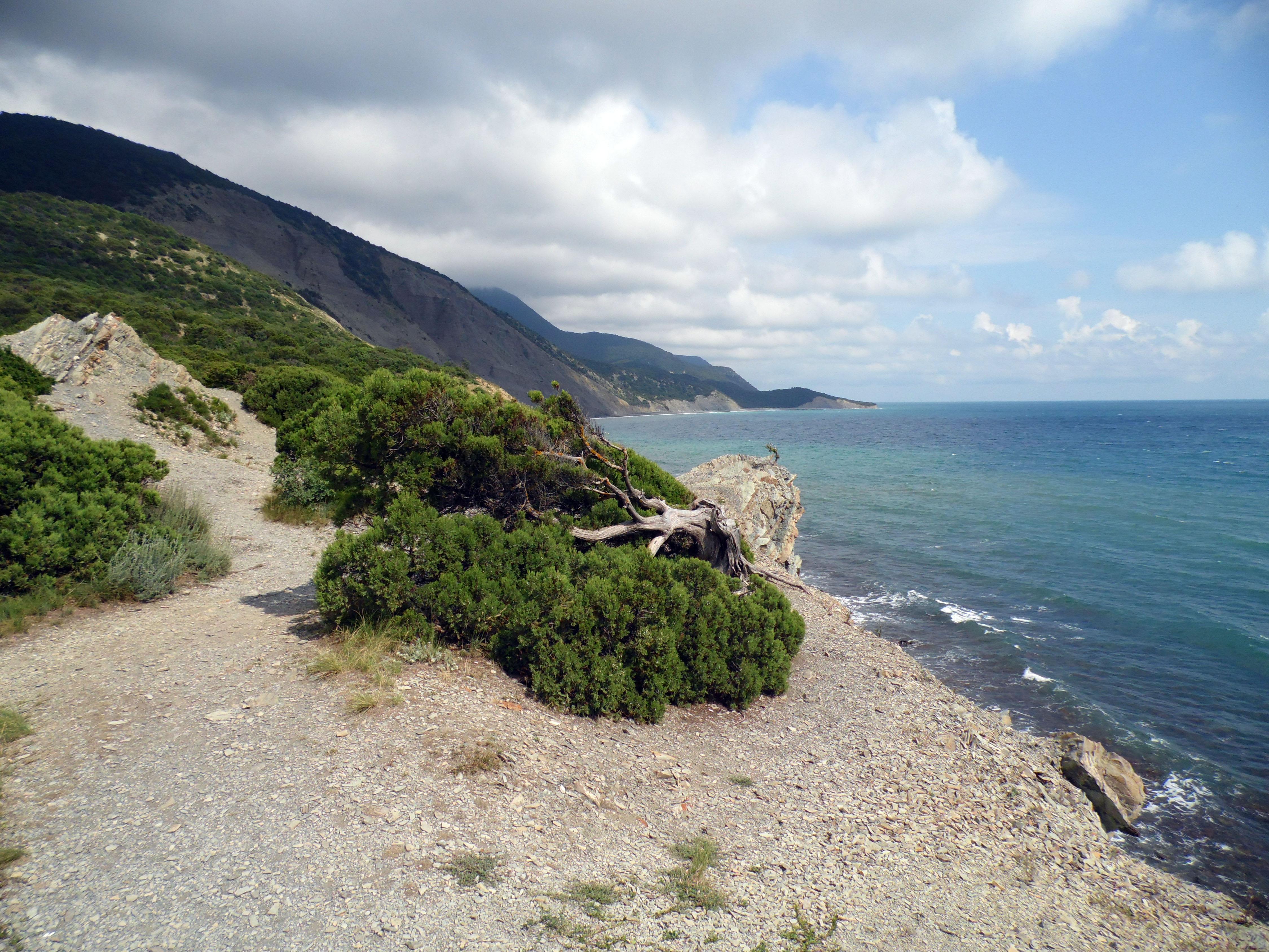 Малый утриш фото пляжей и набережной 2018 отзывы